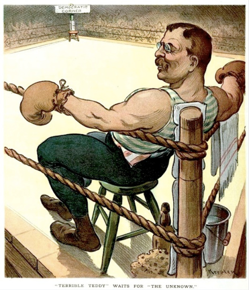 Teddy Roosevelt in a 1904 Election Puck Cartoon.