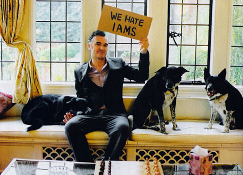 Morrissey with dogs