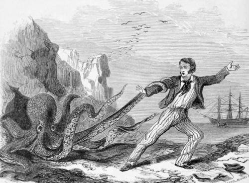 Octopus wrestling