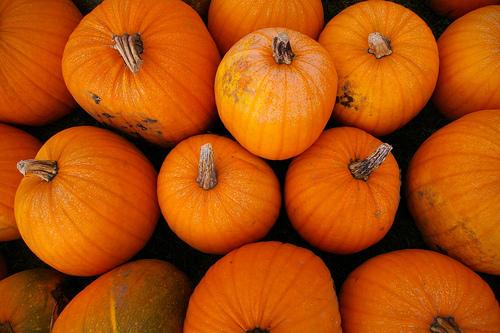 Pumpkins, non-musical