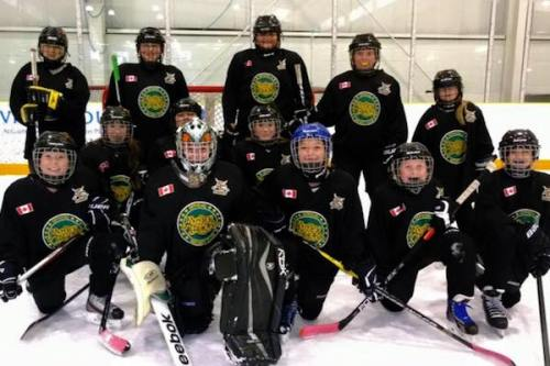 Monster Truck-approved Stoney Creek Sabres hockey club