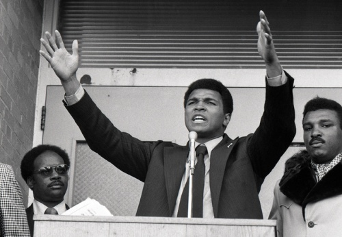 Ali... political