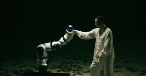 Robots learning martial arts.